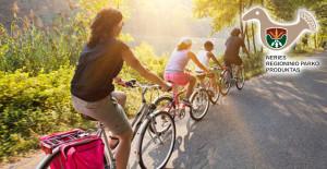 dviraciu nuoma