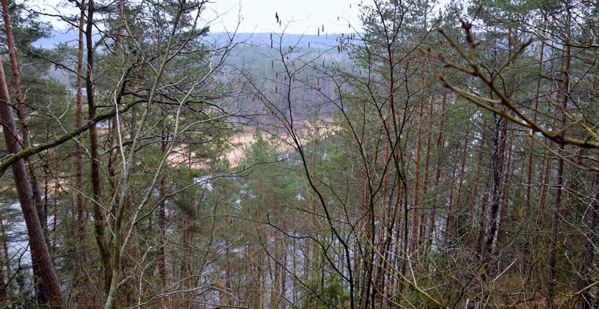 05. Neries slėnio panorama